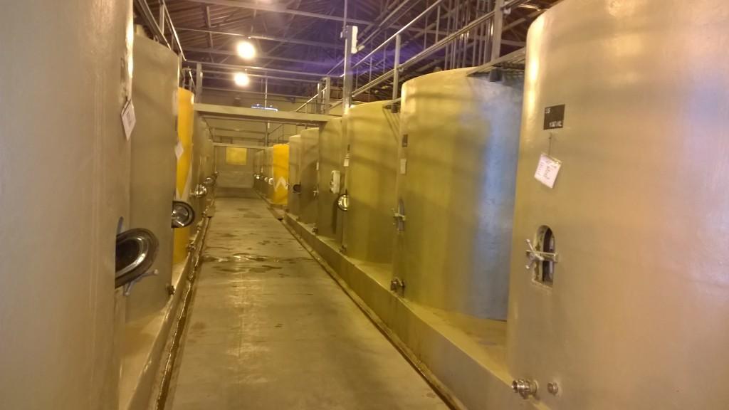 De betonnen cuves in de kelder